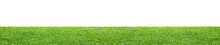 Green Grass Field Isolated On White Background