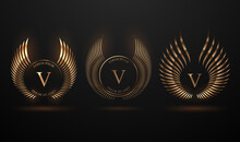 Abstract Golden Wings Template Set On Black Background