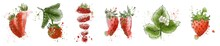 Strawberry Set. Imitation Of Watercolors. Interior Culinary Banner. Red Berries. Print For Postcards, Fabrics. Hand Drawn. Doodle.Strawberry  Leaves, Berry , And Flowers . Berry Slices