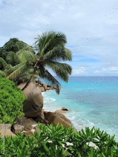 Côte et lagon bleu des seychelles #433613314