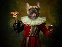 Model Like Medieval Royalty Person In Vintage Clothing Headed By Dog Head On Dark Vintage Background.