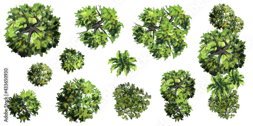 Collection of abstract vector green tree top view isolated on white background Fototapeta