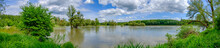 Flooded Rierside Forest At The Danube River Near Wallsee Mitterkirchen In Austria