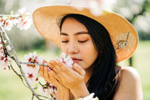 Ethnic Female In Straw Hat Smelling Flowers Of Blooming Cherry Tree Branches Growing In Garden