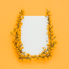 Yellow Blooming Branches And Stems Making Frame On Orange Background