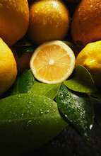 Appetizing Fresh Ripe Juicy Oranges And Lemon With Drops Of Water And Green Leaves