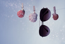 Shells And Sunglasses On The Clothesline.