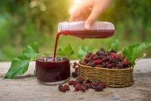 Fresh Mulberry Fruit In Cabbage Mulberry Leaves And Hands Pour Mulberry Juice Into A Glass, Placed On A Wooden Floor, An Agricultural Orchard Is Harvested.