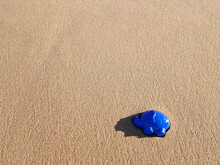 Wet Sand Background With Blue Toy Elephant In The Corner
