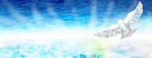 雲海を羽ばたく鳥 光 水彩画