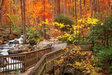 Bridge To Anna Ruby Falls, Georgia, USA