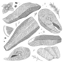Salmon Set, Fish Steak, Atlantic Fillet, Sashimi Slices And Whole Salmon On Skin, Detailed Realistic Illustration, Balck And White Ink Art, Vector Cliparts Isolated