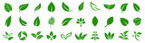 Leaf icons set ecology nature element, green leafs, environment and nature eco sign. Leaves on white background – vector