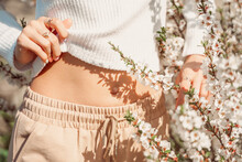 Partial View Of Beautiful Slender Woman In Delicate Clothes Posing With Hands Near Her Belly And With White Flowers In Bloom Delicate Photo, Pastel Colors.