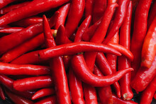 Drums Of Bright Red Chili Peppers