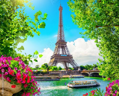 Fotografie, Obraz Blossom in Paris