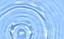 水に浮かぶ青紅葉と波紋