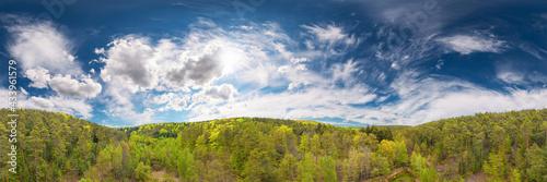 pfaelzer forest 360° airpano
