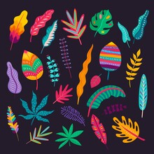 Mexican Style Leaves And Plants, Vector Traditional Floral Ornament Of Mexico. Colorful Foliages Of Exotic Tropical Plants And Trees With Folk Or Ethnic Geometric Pattern Of Bright Dots And Stripes