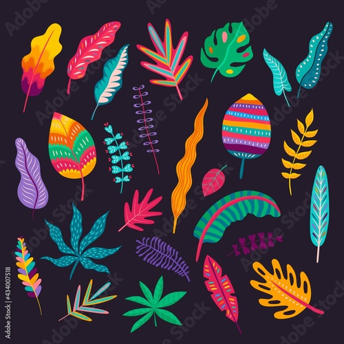 Fotografia Mexican style leaves and plants, vector traditional floral ornament of Mexico