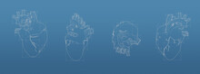 Heart 3d Blueprint Mesh Model  On A Blue Background. Front View Orthographic  And Perspective Free Style Render, 3d Rendering