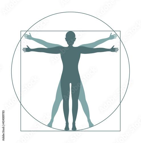 Canvas vitruvian man icon