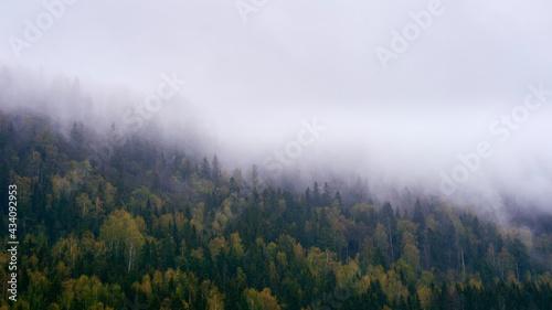 Fotografiet A rainy day on a hillside by Lake Mjøsa in spring.
