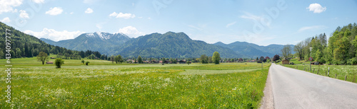 country road rural spring landscape Rottach valley, with view to alps and flower meadows, upper bavaria