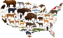Vector Map Of USA With State Animals
