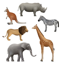 Wild Realistic Animals. Elephant Kangaroo Lion Zebra Rhinoceros African Safari Collection Decent Vector Illustration
