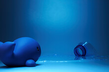 Creative Composition Of Toy Dolphin Placed On Blue Surface Near Plastic Bottle In Studio