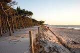 Fototapeta Fototapety z morzem do Twojej sypialni - Morze bałtyckie wydmy Las