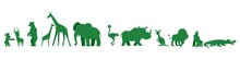 Animals Living In The Wild. Forest Animals.