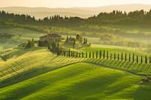 Green Toscany