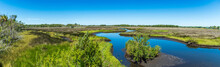 Panorama From Lastinger Tower At The End Of The Chassahowitzka Salt Marsh Trail, Crystal River Wildlife Refuge - Homosassa, Florida, USA