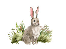 Bunny In The Grass. Watercolor Illustration. Cute Bunny Sit In The Meadow Grass On White Background. Rabbit In The Meadow Or Field Herbs. Fluffy Bunny Side View. Natural Hand Drawn Element