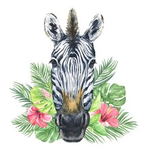 Watercolour Zebra Head Isolated On White With Green Tropical Leaves With Hibiscus Flowers. Watercolor Animal Illustration.