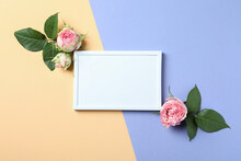 Roses And Empty Frame On Two Tone Background