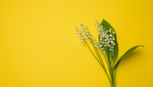Bouquet Of Blooming Lilies Of The Valley On A Yellow Background, Top View