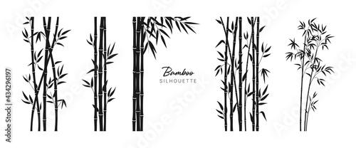 Valokuva Set of bamboo silhouette on white background