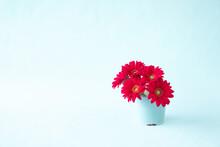 赤いガーベラのアレンジメント(ブルーバック」)