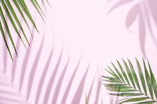 Minimal Creative Layout Made Of  Tropical Palm Leaves On Pastel Pink Background. Summer Exotic Concept With Copy Space.