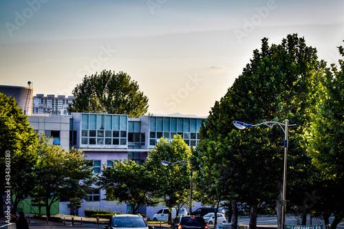 Stampa su Tela 韓国、大邱大学とその周辺を散策する