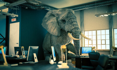 elephant sitting inside an office. concept of unsolved problems.