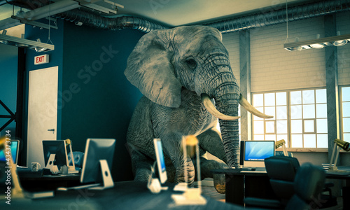 Fotografiet elephant sitting inside an office. concept of unsolved problems.