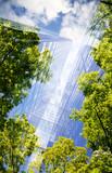 Fototapeta Kawa jest smaczna - green city - double exposure of lush green forest and modern skyscrapers windows.
