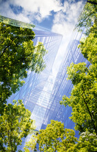 Green City - Double Exposure Of Lush Green Forest And Modern Skyscrapers Windows.