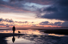 Silhouette Of The Woman With Her Dog Enjoy The Scenic Sunset View Over Sandy Beach And Misty Coast Toward City Lights In The Distance