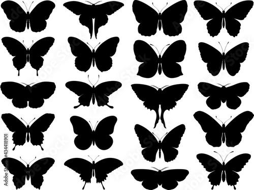 Obraz na plátne Black butterfly silhouettes