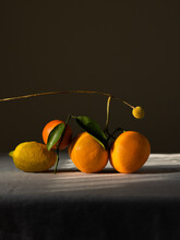 Still Life Of Orange Oranges And One Lemon. They're Lying On The Table. Dark Color Photo